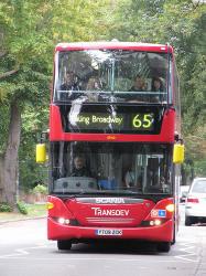 65 bus